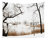 Frozen Marshland IIi Tapestry