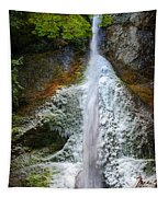 Frozen Marymere Falls Tapestry