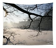 Frozen Pond Tapestry