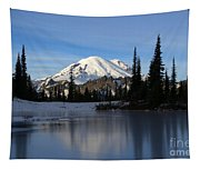 Frozen Reflection Tapestry