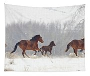 Frozen Track Tapestry