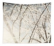 Frozen Tree Branches In Winter Tapestry