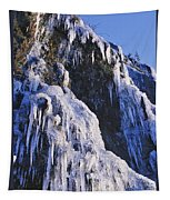 Frozen Waterfall On Oregon Central Coast Tapestry