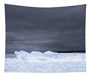 Frozen Wave On Lake Michigan Tapestry