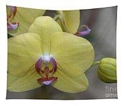 Fuller's Sunset Orchid Tapestry