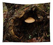 Fungus In A Knothole Tapestry