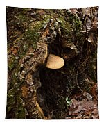 Fungus In Stump Hole Tapestry