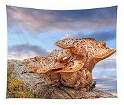 Funky Fungi Tapestry