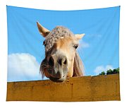 Funny Horse Tapestry