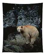 Fv3608, Jason Puddifoot White Spirit Tapestry