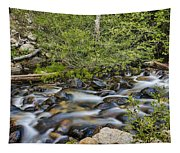 Galena Creek Tapestry