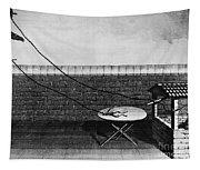 Galvani Galvanism - To License For Professional Use Visit Granger.com Tapestry