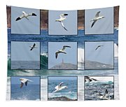 Gannets Galore Tapestry