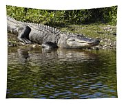 Gator Smile Tapestry