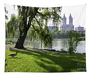 Geese In Central Park Nyc Tapestry