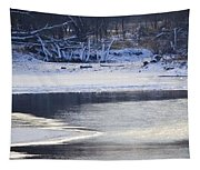 Geese On Ice Tapestry