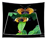 Gentle Butterfly Courtship 01 Out Of Bounds Tapestry