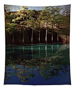 Ghostly Quiet Tapestry