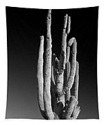 Giant Saguaro Cactus Portrait In Black And White Tapestry