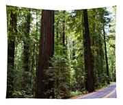 Giants And The Road Tapestry