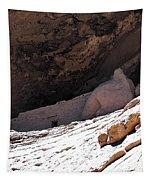 Gila Cliff Slope Tapestry