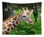 Giraffe-09034 Tapestry