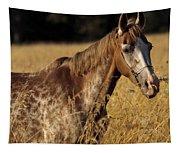 Giraffe Horse Tapestry