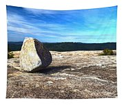 Glacial Erratic On Bald Rock Dome Tapestry