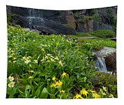 Glacier Lilies And Globeflower Beside A Mountain Stream Tapestry