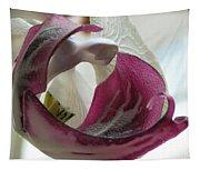 Glass Beauty Tapestry
