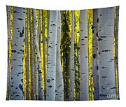 Glowing Aspens Tapestry
