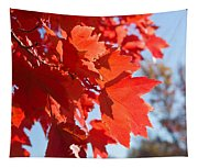 Glowing Fall Maple Colors 4 Tapestry