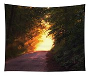 Glowing Morning Tapestry