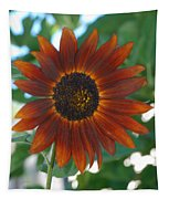 Glowing Red Sunflower Tapestry