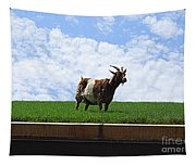 Goat On A Sod Roof In Sister Bay In Wisconsin Tapestry