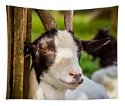 Goat Portrait Tapestry