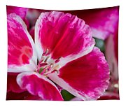 Godetia Pink And White Flower Tapestry