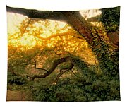 Golden Dawn Tapestry