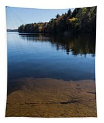 Golden Ripples Bedrock - Fall Reflection Tranquility Tapestry