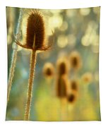 Golden Teasels Tapestry