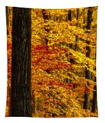 Golden Trees Glowing Tapestry