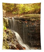 Golden Waterfall October In Ohio Tapestry