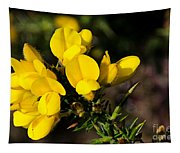 Gorse Tapestry