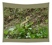Gosling Chewing On Some Grass Tapestry