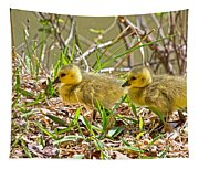 Little Ones Tapestry