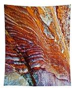 Graceful Grooves Rock In Petra-jordan Tapestry