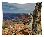 Grand Canyon And Dead Tree 1 Tapestry