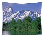 Grand Tetons National Park Wy Tapestry