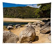 Granite Boulders In Abel Tasman Np New Zealand Tapestry