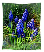 Grape Hyacinths 2014 Tapestry